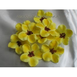 Yellow whit brown blossoms