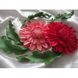 Edible Gerbera Daisy with leafs