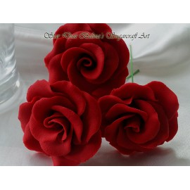 Medium wired open roses